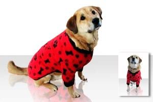Red fleece pajamas for dogs